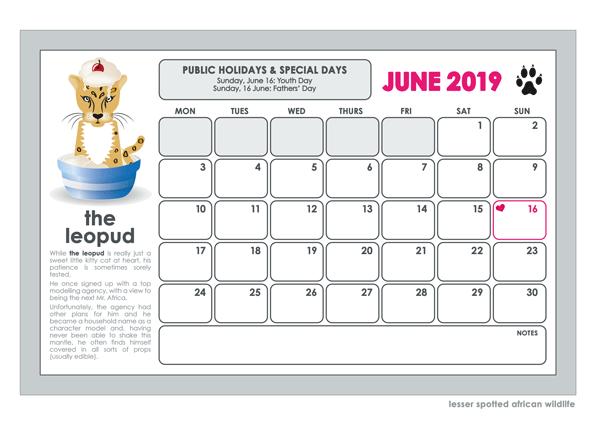 2019 lesser spotted wall calendar june