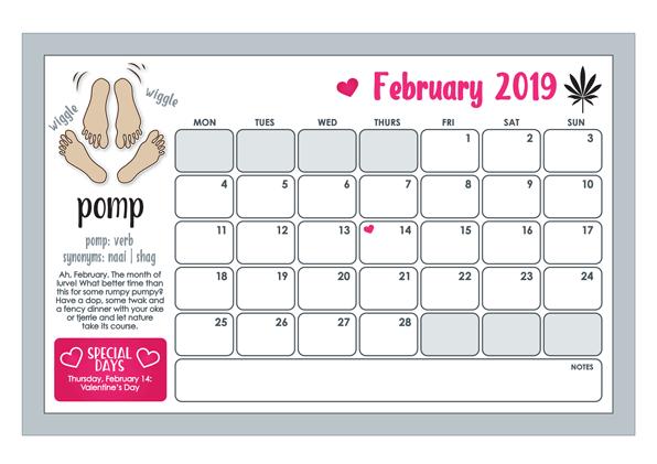 2019 vars vannie kaap wall calendar february